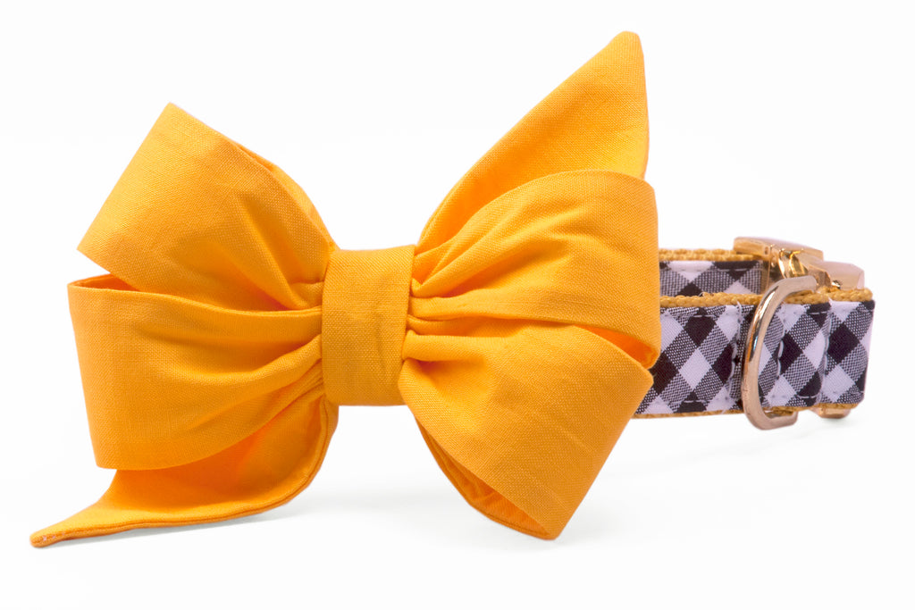 Steelers Yellow on Black Check Belle Bow Dog Collar