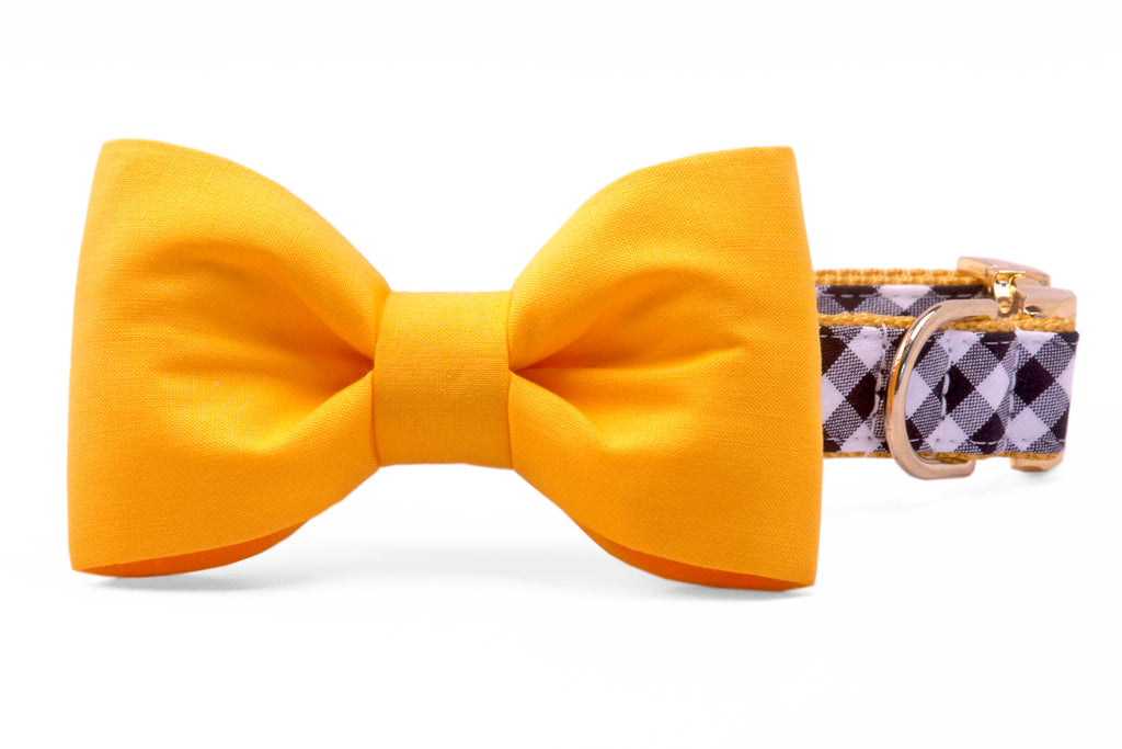 Steelers Yellow on Black Check Bow Tie Dog Collar
