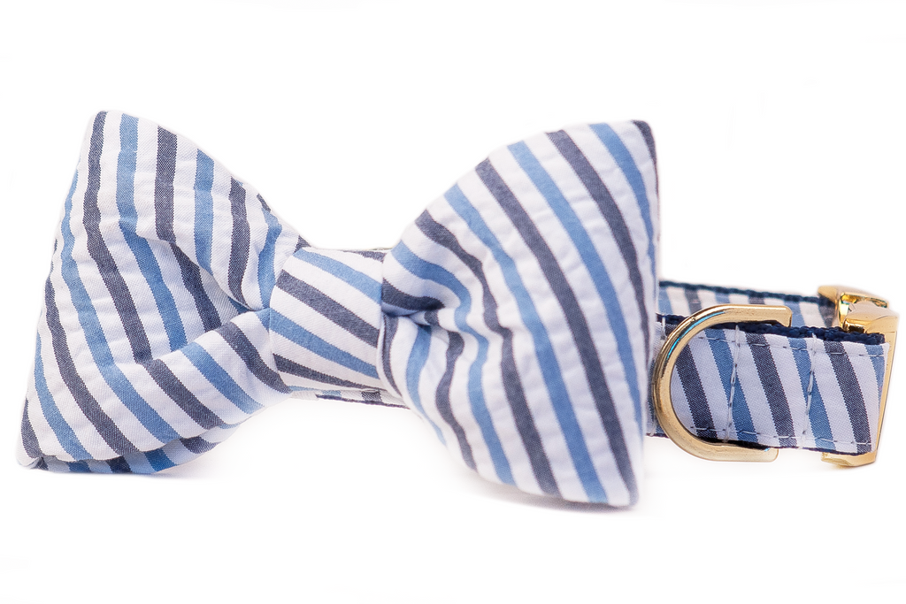 Blue & Navy Seersucker Bow Tie Dog Collar