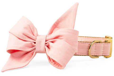 Blush Pink Belle Bow Dog Collar