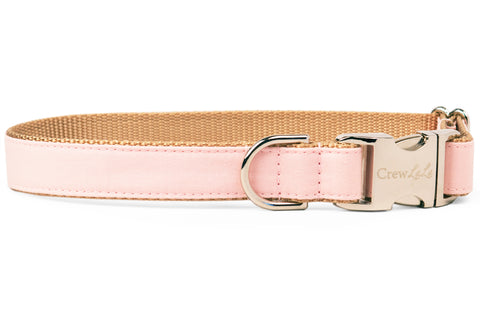 Blush Pink Dog Collar