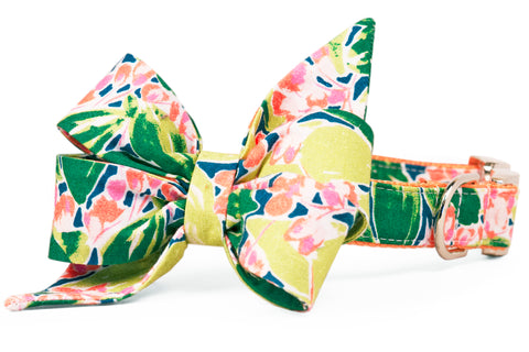 Botanical Gardens Belle Bow Dog Collar