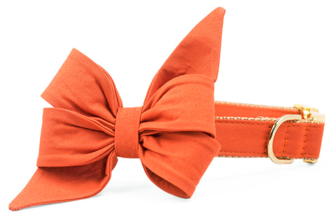 Burnt Orange Belle Bow Dog Collar
