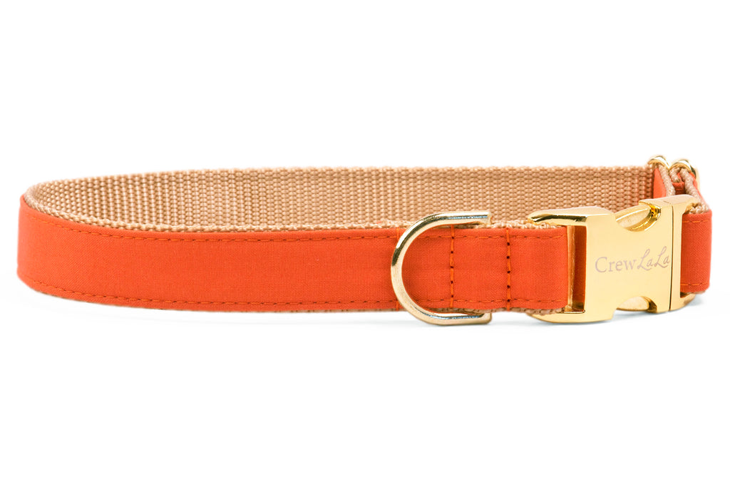 Burnt Orange Dog Collar