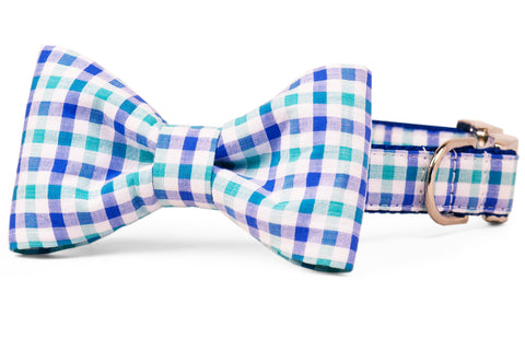 Cali Check Bow Tie Collar