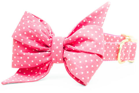 Pink Dot Belle Bow Dog Collar