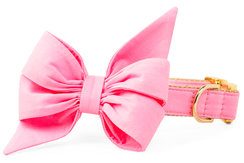 Carnation Pink Belle Bow Dog Collar