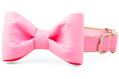Carnation Pink Bow Tie Dog Collar