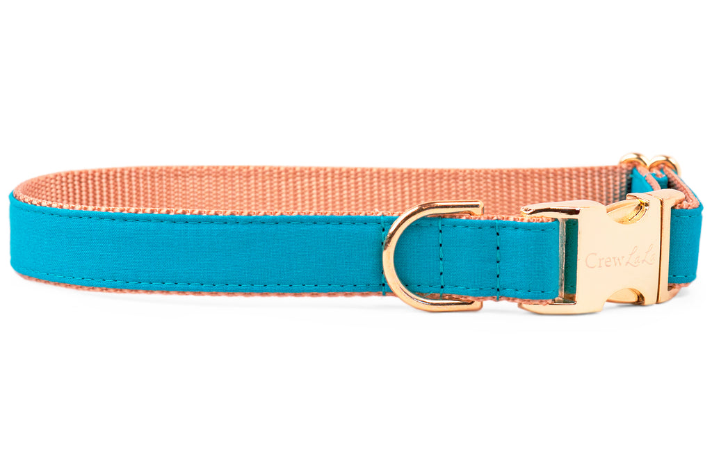 Caribbean Dog Collar