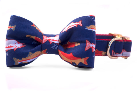 Catch of the Day Bow Tie Dog Collar