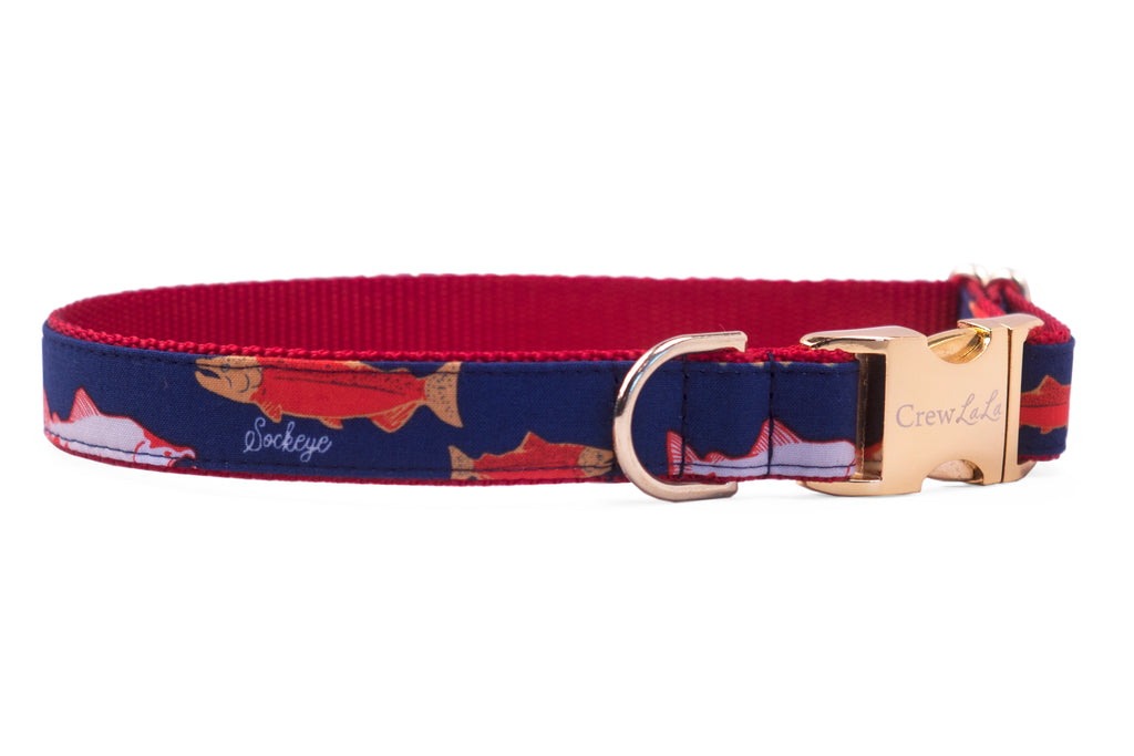 Catch of the Day Dog Collar - Two Styles!