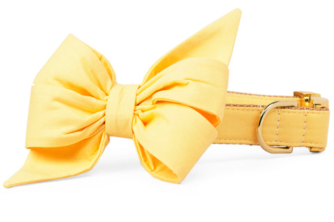 Citrus Yellow Belle Bow Dog Collar