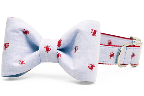 Feeling Crabby Bow Tie Dog Collar