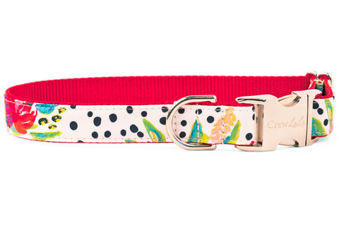 Dalmatian Bouquets Dog Collar - Two Styles!