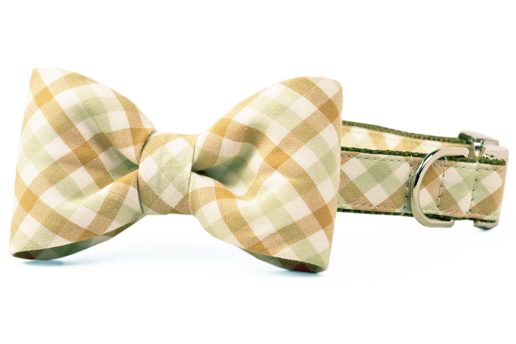 Dunes Check Bow Tie Dog Collar