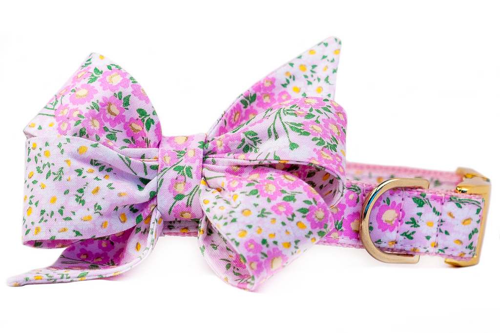 Spring Daisy Belle Bow Dog Collar