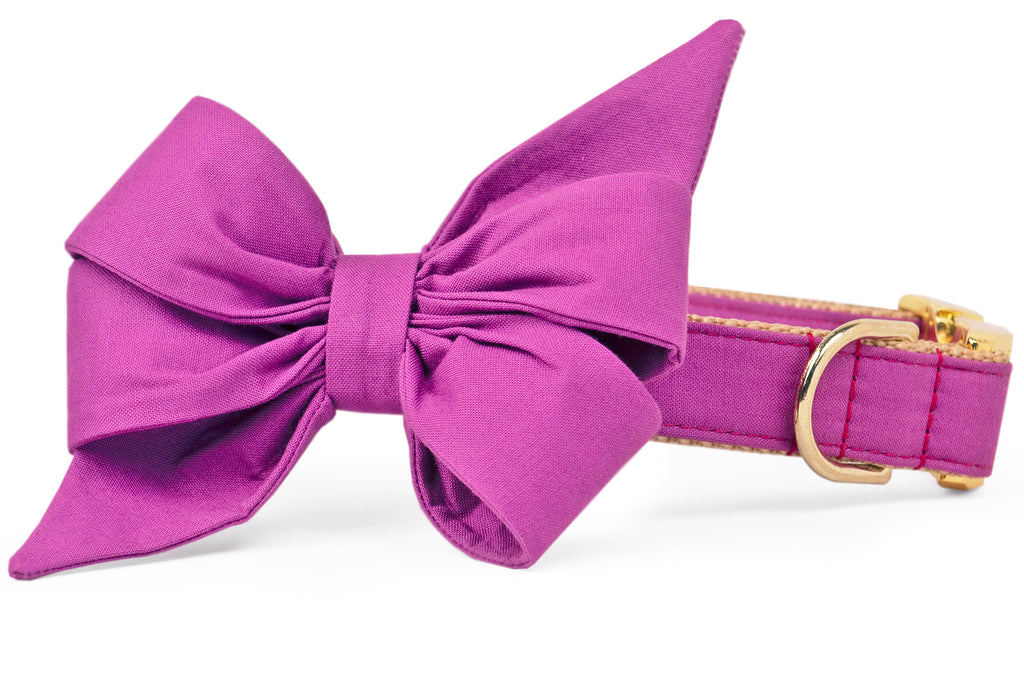 Geranium Purple Belle Bow Dog Collar