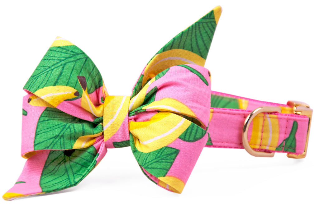 SALE BELLE BOW COLLAR - Goin' Bananas