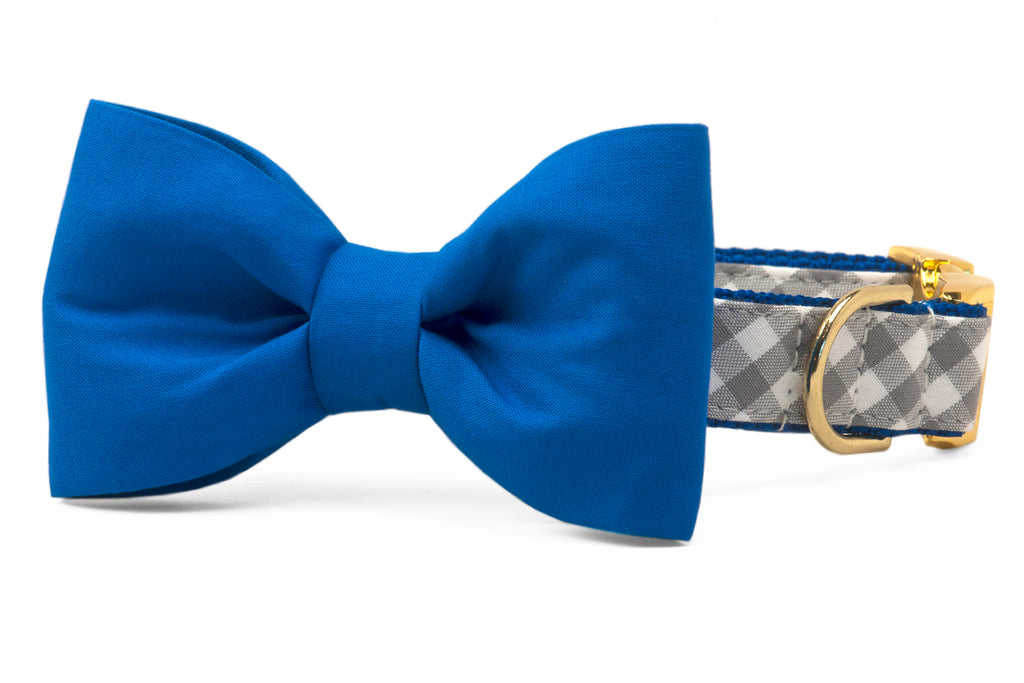 Air Force Blue on Silver Check Bow Tie Dog Collar