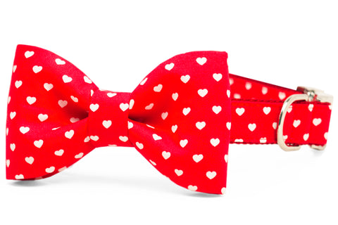 Happy Hearts Bow Tie Dog Collar