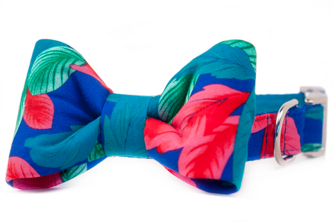 SALE BOW TIE COLLAR - Hawaiian Shirt on Royal