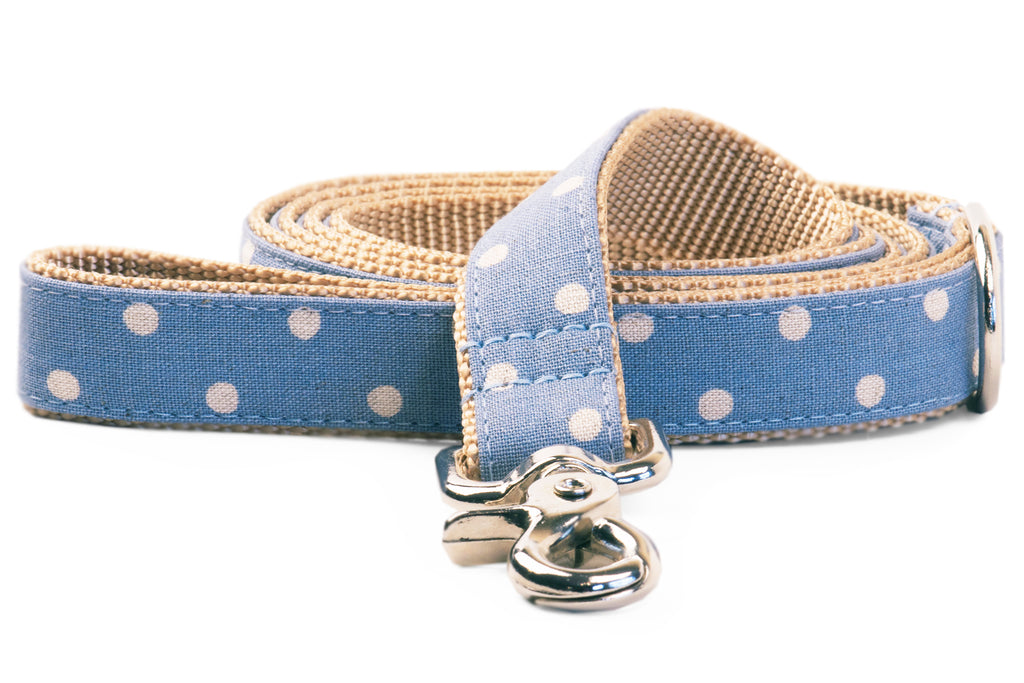 Ivory Dot on Dusty Blue Matching Leash