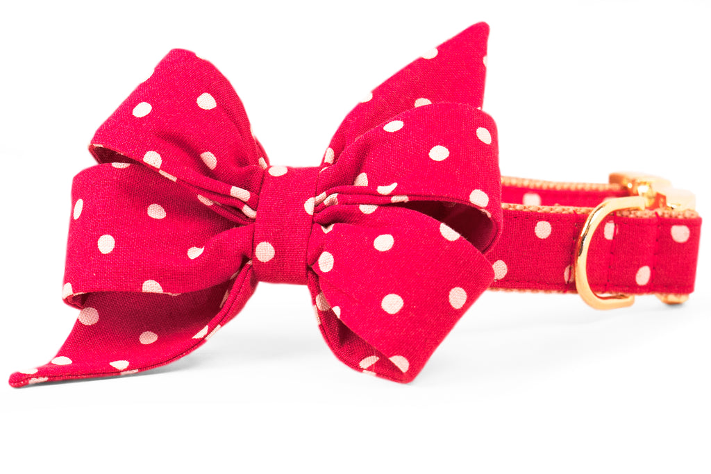 Ivory Dot on Ruby Red Canvas Belle Bow Dog Collar