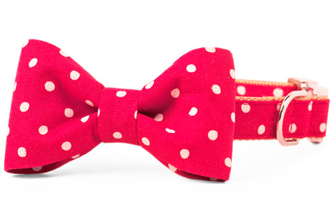 Ivory Dot on Ruby Red Canvas Bow Tie Dog Collar