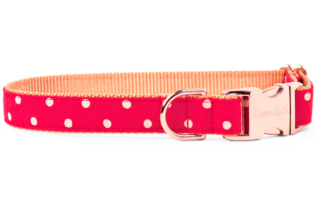 Ivory Dot on Ruby Red Dog Collar