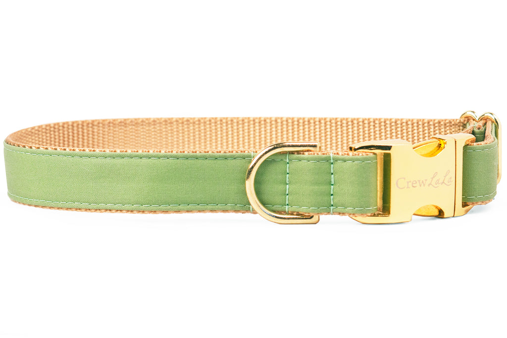 Laurel Green Dog Collar