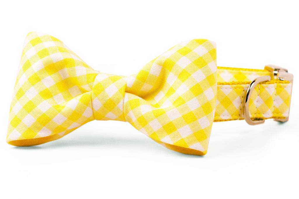 Lemon Picnic Plaid Bow Tie Dog Collar