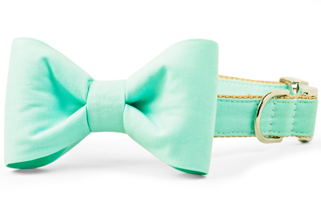 Mint Bow Tie Dog Collar