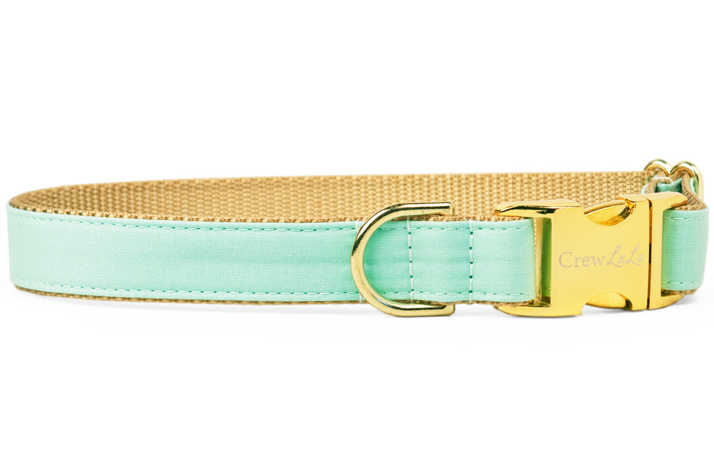 Mint Dog Collar
