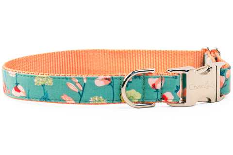 Blooming Wildflowers Dog Collar