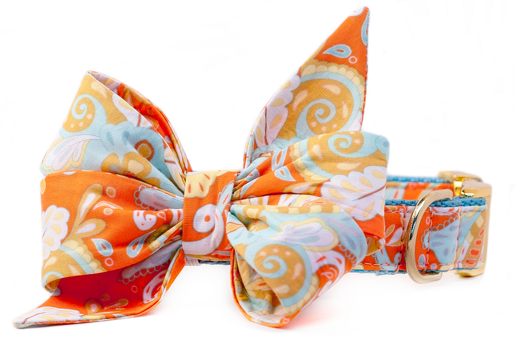 Orange Paisley Belle Bow Dog Collar