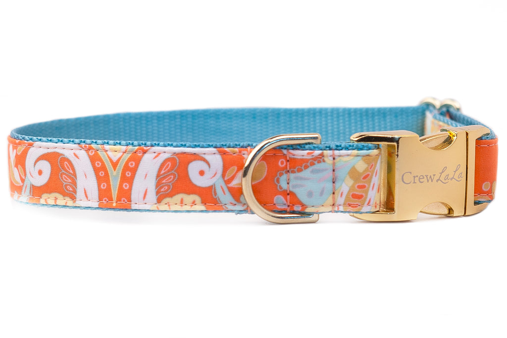 Orange Paisley Dog Collar