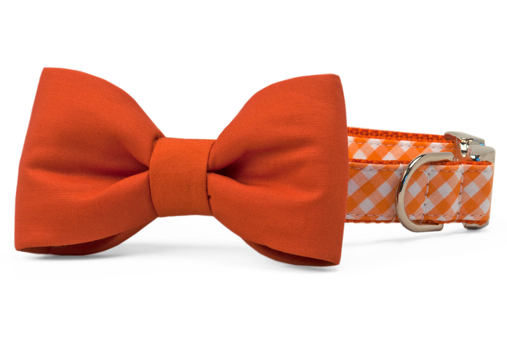 Texas Burnt Orange on Orange Check Bow Tie Dog Collar