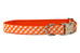 Texas Burnt Orange on Orange Check Belle Bow Dog Collar