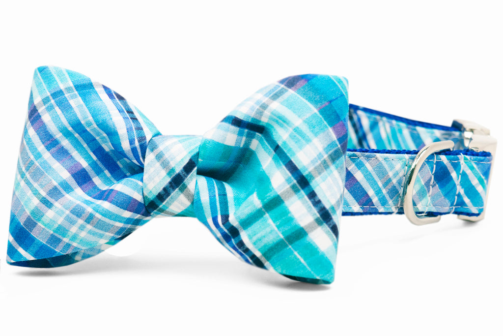 Pawley's Plaid Bow Tie Collar