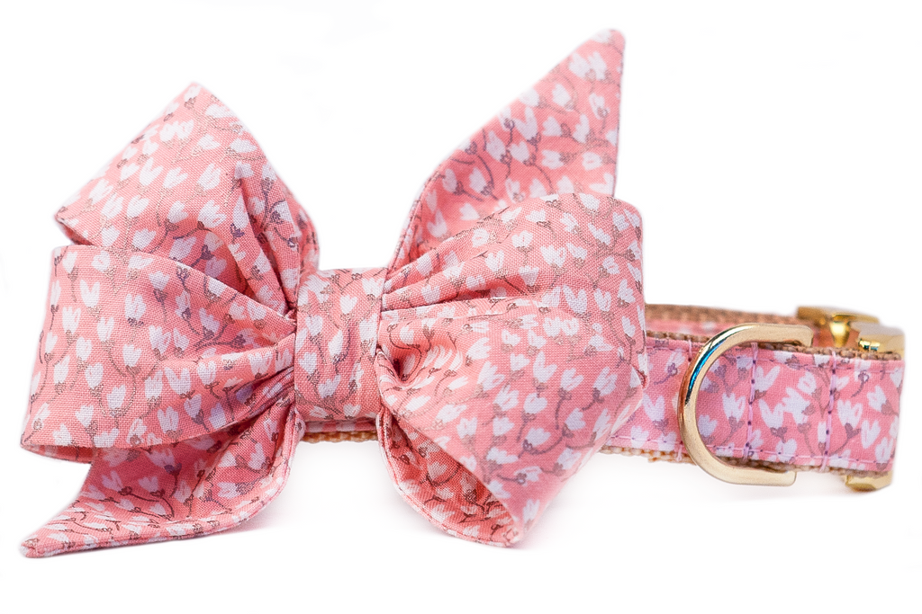 Pink Tulips Belle Bow Dog Collar