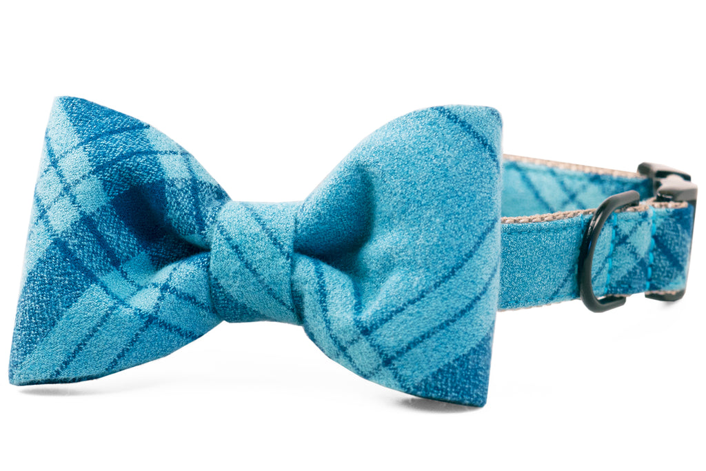 Gus Flannel Bow Tie Dog Collar