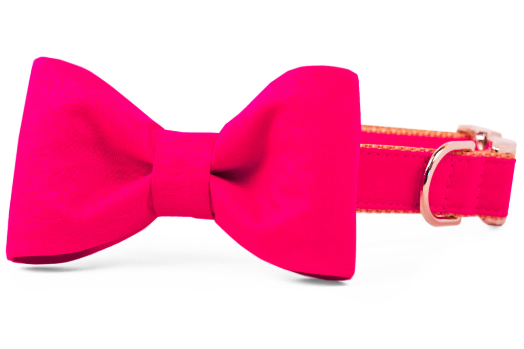 Pomegranate Bow Tie Dog Collar