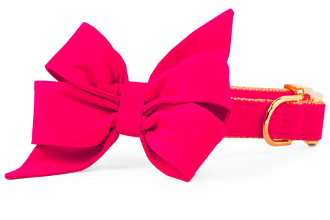 Pomegranate Belle Bow Dog Collar