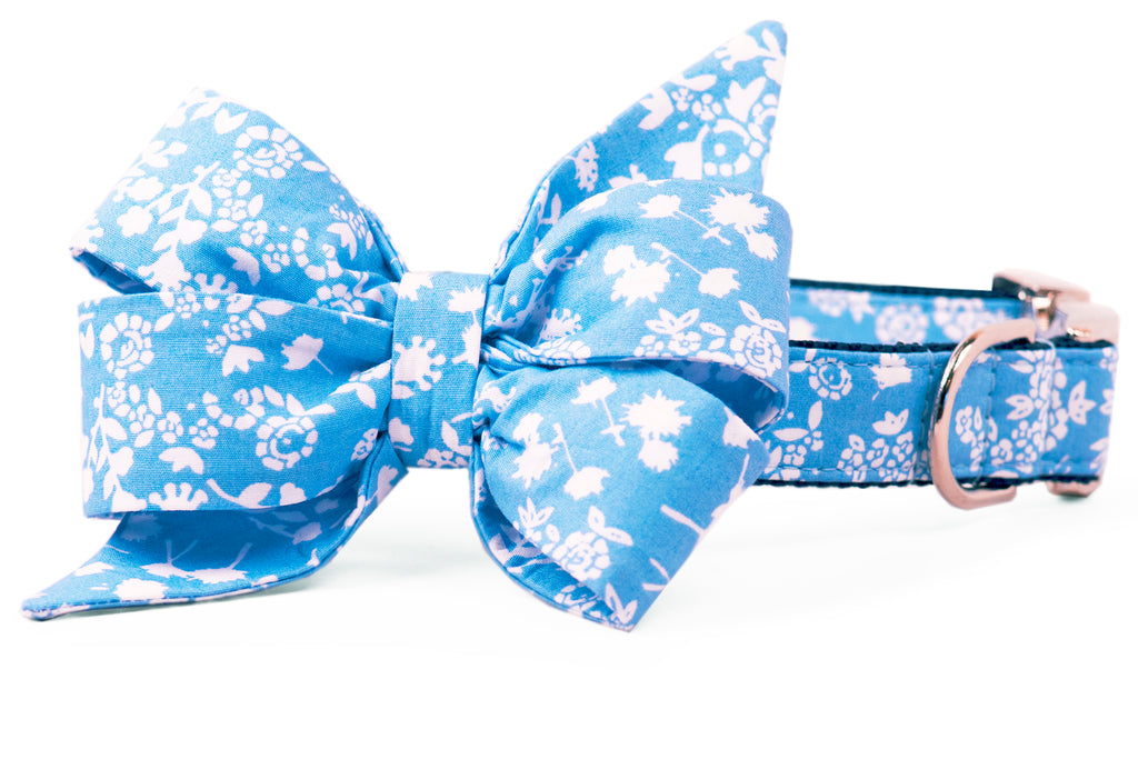 Queen Ellie's Lace Belle Bow Dog Collar