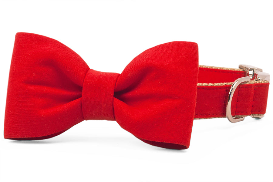 Scarlet Red Bow Tie Dog Collar