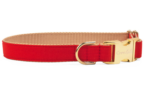 Scarlet Red Dog Collar