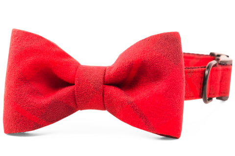 Clifford Flannel Bow Tie Dog Collar