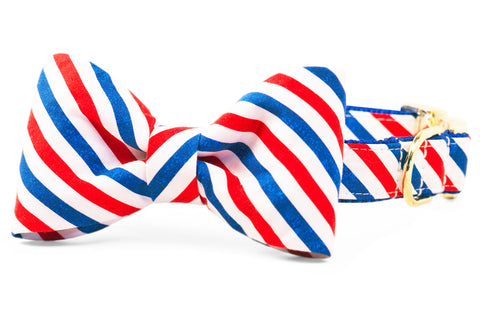 Honor Stripe Bow Tie Dog Collar