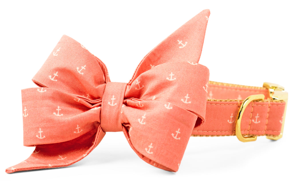 Rose Anchors Belle Bow Dog Collar