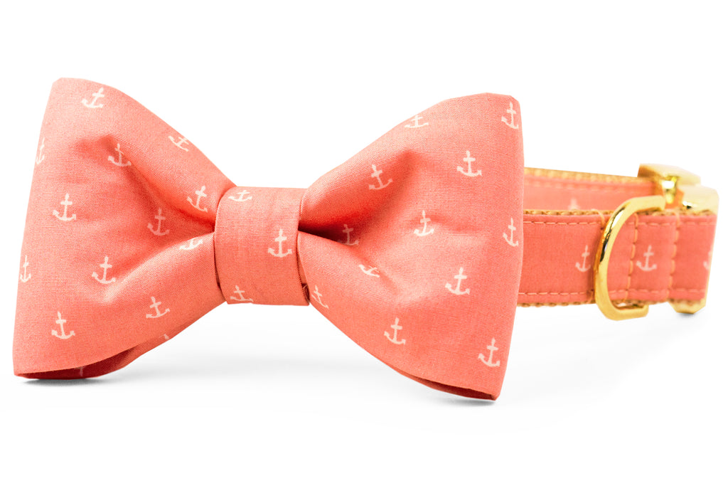 Rose Anchors Bow Tie Dog Collar